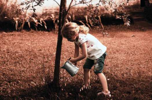 ECO-FRIENDLY TIPS YOU MUST TEACH YOUR CHILDREN